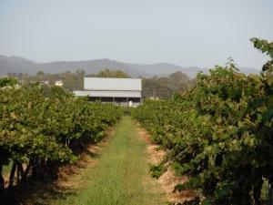 Mudgee vineyard house