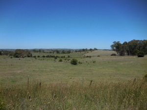 NSW country