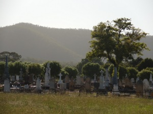 Vineyard graveyard