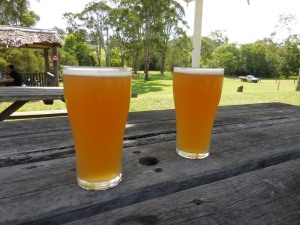 Coopers Ale - Wollombi Tavern
