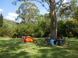 Free camp at Wollombi Tavern