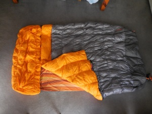 Nemo with top and pillow