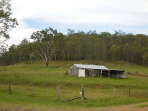 Wollombi road scene