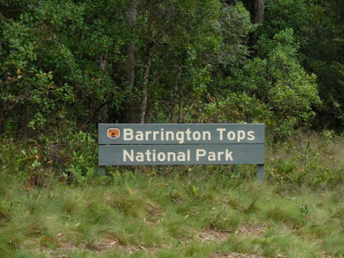 Barrington Tops (2)