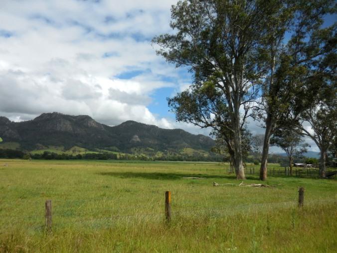 Barrington Tops view