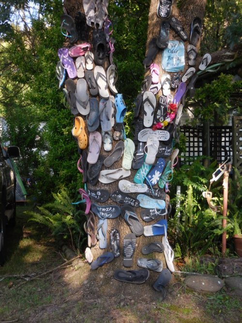 Classy thong tree from Gloucester camp