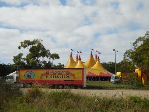 New Years circus (3)