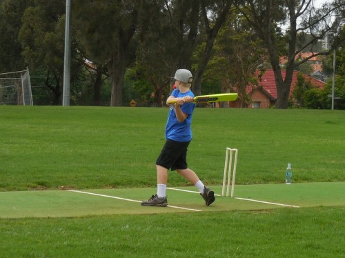 cricket-swing-and-a-miss-2
