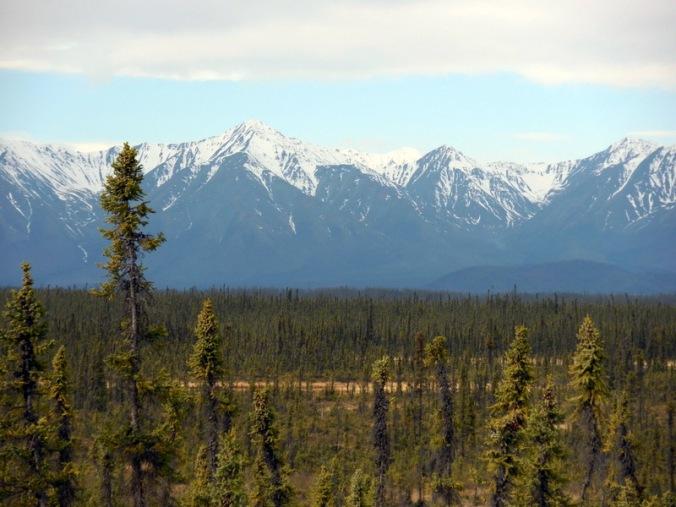 Mountains near Beaver Creek