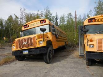 Naabia Niign Bus 2