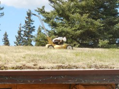 Rooftop lawn mower