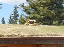 Rooftop lawn mower