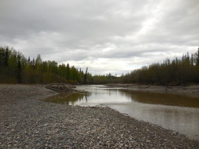 Tanana River 3