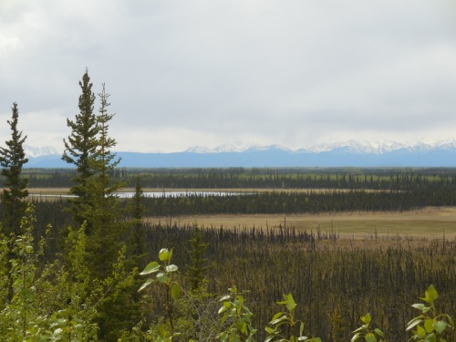 Wrangell Mountains 4