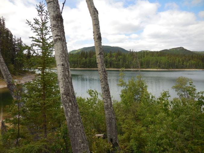 Allan Lake 2