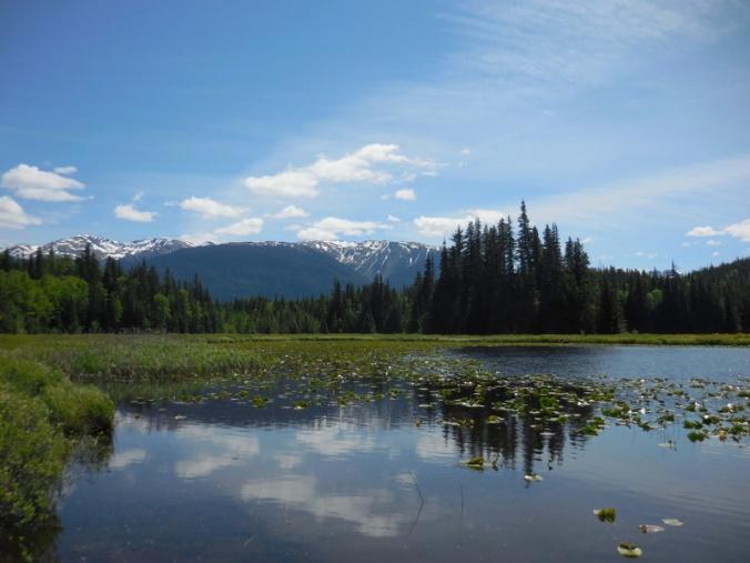 Bonus Lake 4