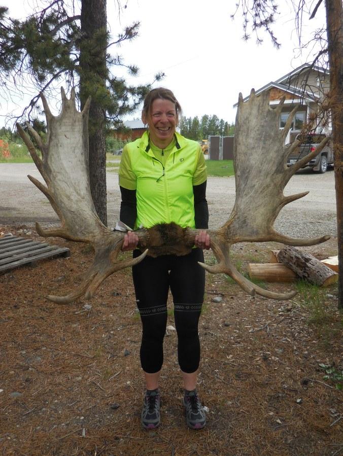 Nancy and JM's moose horns