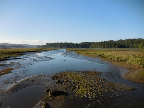 Port Hardy Estuary