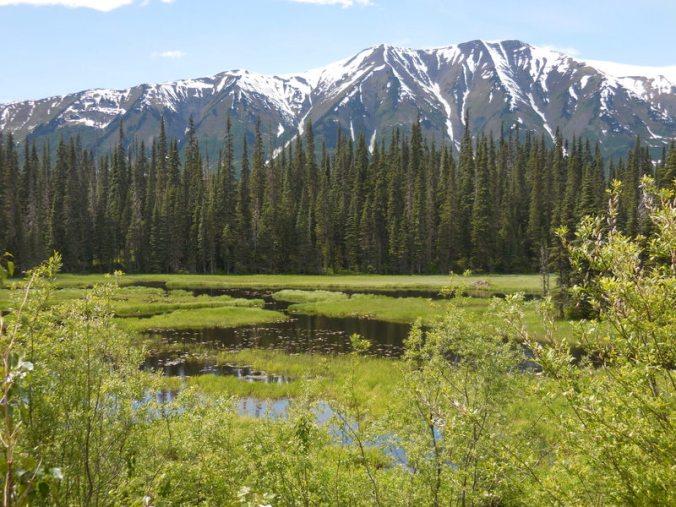Skeena Mountain and beaver ponds 1