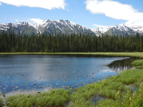 Skeena Mountain and beaver ponds 4