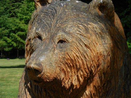 Wood - bear