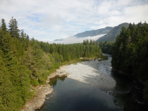 Woss River in the morning