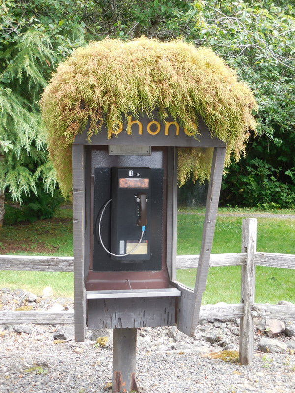 Forks phone - yes, it rains a lot here