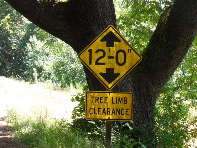 Note tree branch warning sign