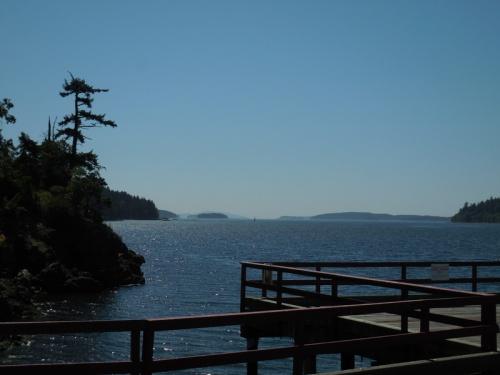Salt Springs Island view