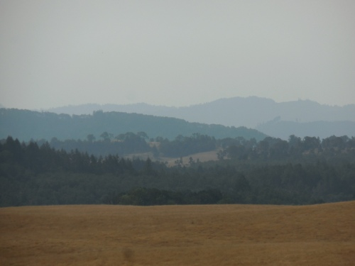 Distant views 2