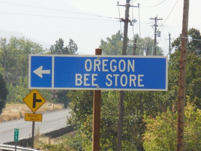 I was stung near here