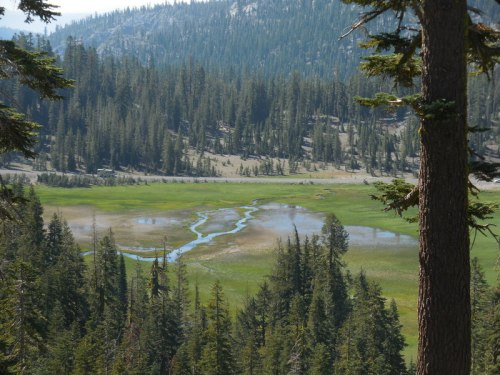 King Creek meadow