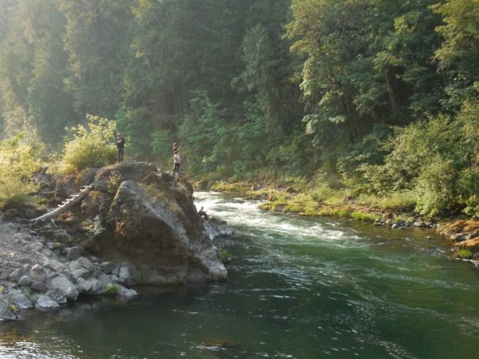 North Umqua River 4