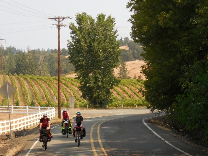 RIders in the vines