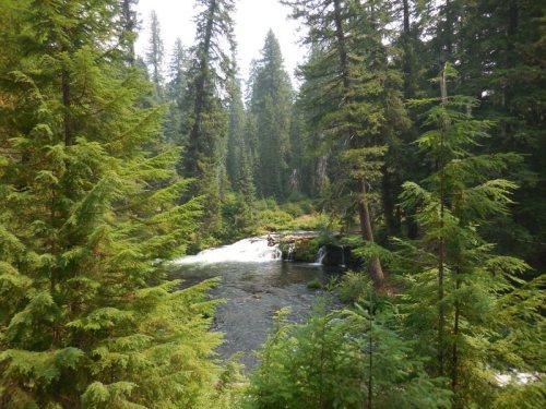 Rogue River 3