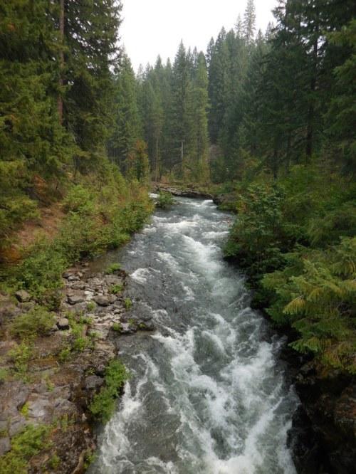 Rogue River 5