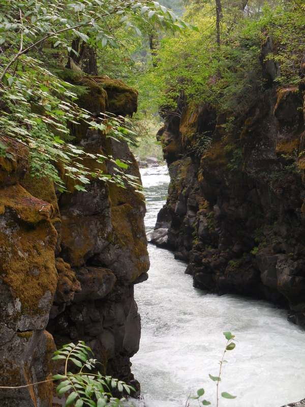 Rogue River Gorge 4