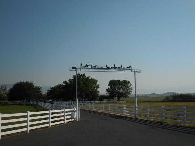 Shasta farm