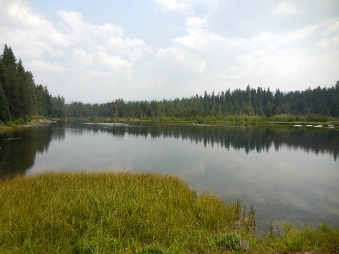 Stumpy Lake 1