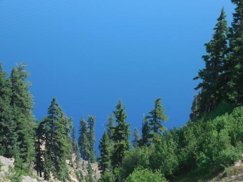 Trees and lake behind 1