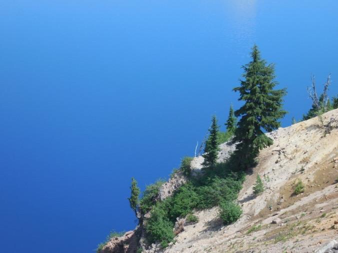 Trees and lake behind 2