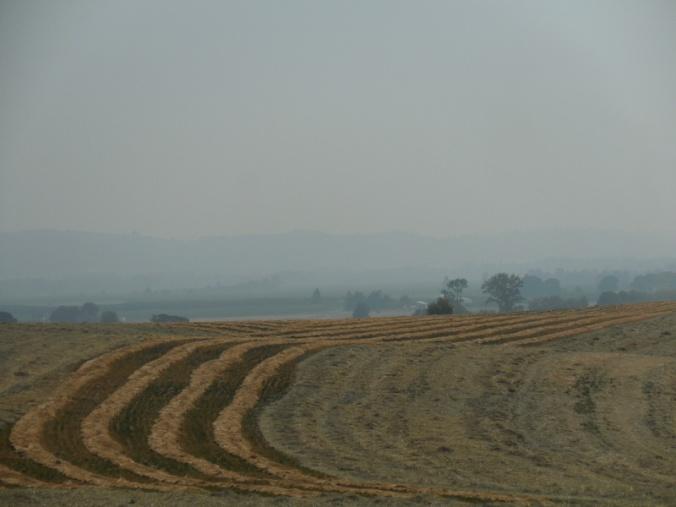 Willamette Valley view 1