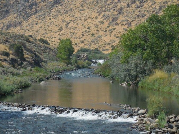 Carson River 2