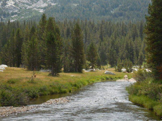 Dana Creek