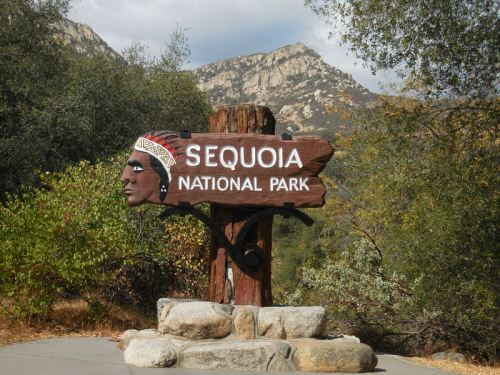 Sequoia NP sign