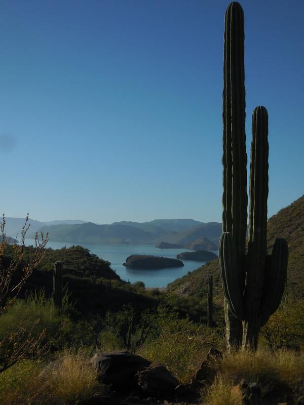 Bay of Concepcion Baja 5