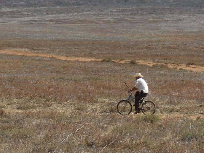 Bicycle cowboy