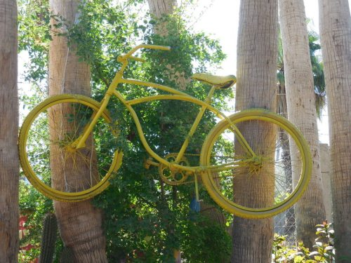 Bike in tree