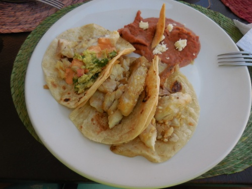 Fish taco lunch 1