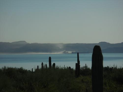 Island in the Gukf